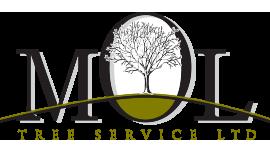 Calgary Tree Service